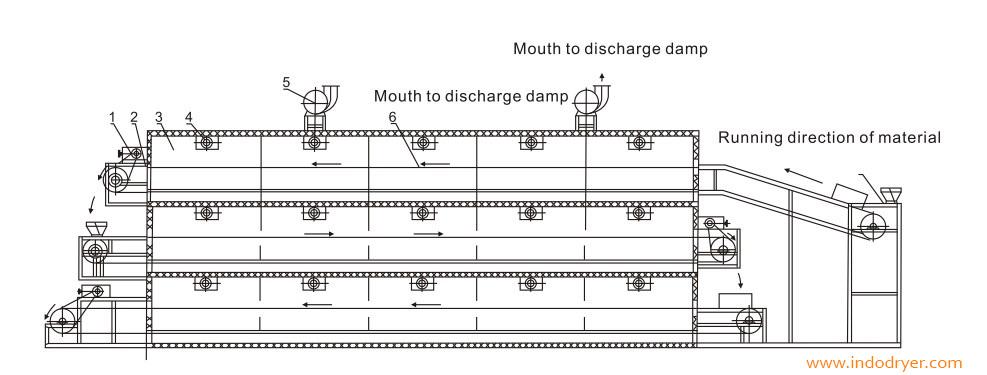 Schemation of stracture Dw